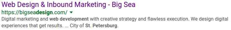 st pete web marketing
