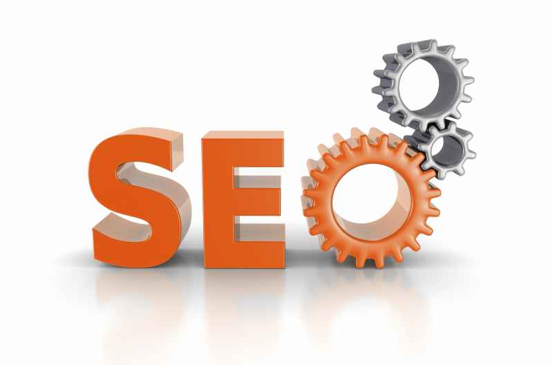 seo clearwater, palm harbor